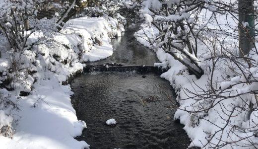 オフシーズンの軽井沢「小瀬温泉ホテル」へひとり泊まってきた
